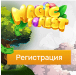 Magic forest игра